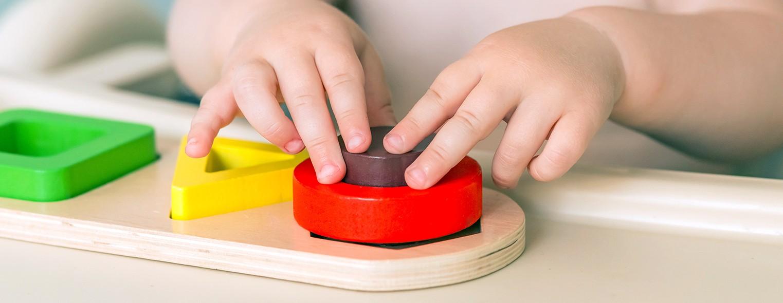 Perioade sensibile pentru învățare (Educația Montessori)